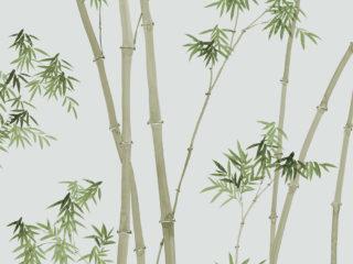 Zen-Bamboo
