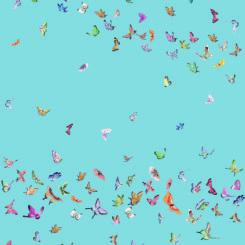 butterfly-260301