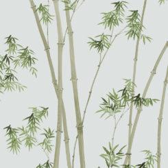 bamboo-260101