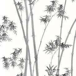 bamboo-260103