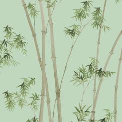 bamboo-260105