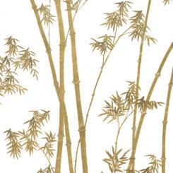 bamboo-260106