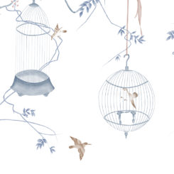 birdcage-260203