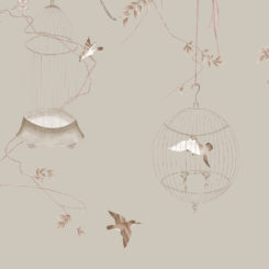 birdcage-260204