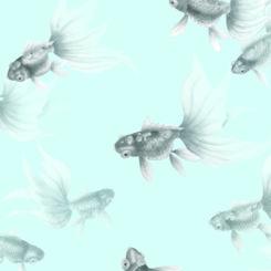 goldfish-treasures-840304