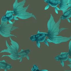 goldfish-treasures-840305