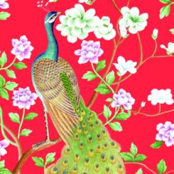 peacock-840502